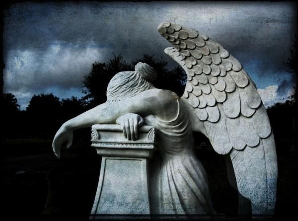 mornfull angel